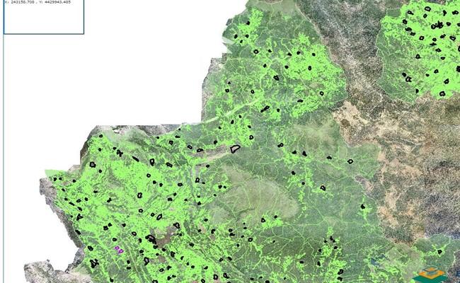 Τι αλλάζει με την απόφαση του ΣτΕ για τους δασικούς χάρτες