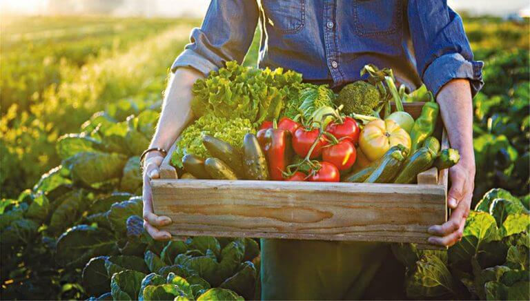 Μητρώο αγροτών: Πώς θα χορηγούνται οι βεβαιώσεις