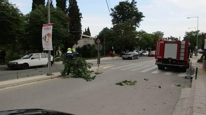 EpirusPost • Ειδήσεις, Ιωάννινα, Άρτα, Πρέβεζα, Θεσπρωτία • dentro dompoli2
