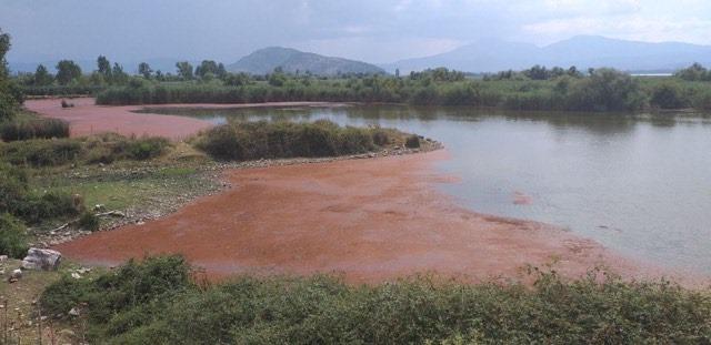 Ουδέν ανησυχητικό από το κόκκινο της λίμνης