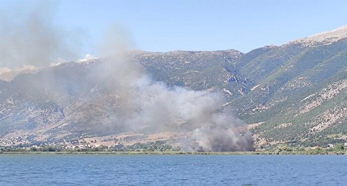 EpirusPost • Ειδήσεις, Ιωάννινα, Άρτα, Πρέβεζα, Θεσπρωτία • amfitea fotia