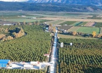 EpirusPost • Ειδήσεις, Ιωάννινα, Άρτα, Πρέβεζα, Θεσπρωτία • kestrini kampos