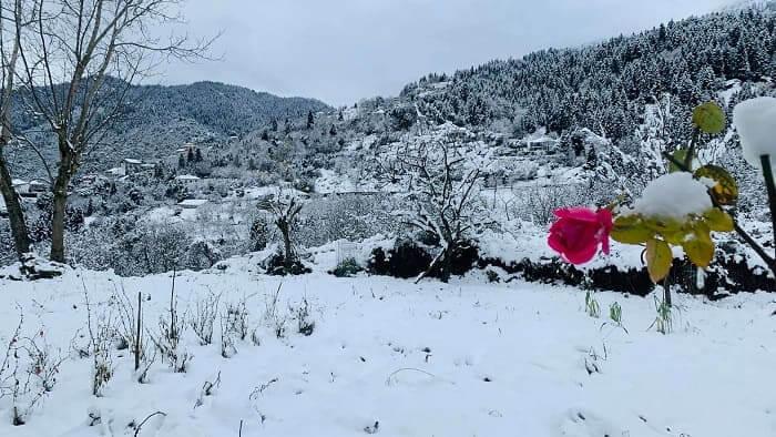 Από τις ομορφότερες εικόνες του χειμώνα..