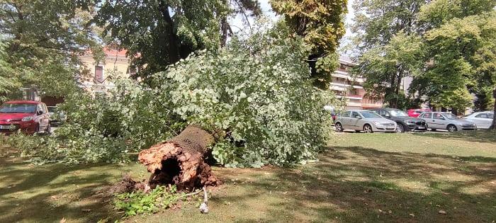 EpirusPost • Ειδήσεις, Ιωάννινα, Άρτα, Πρέβεζα, Θεσπρωτία • serai dentro5