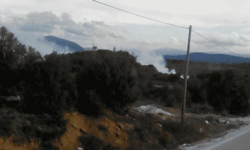 ELLHNIKO_XYTA_FOTIA1