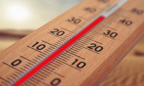 thermometro zesti